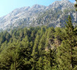 The initial part of Samaria gorge