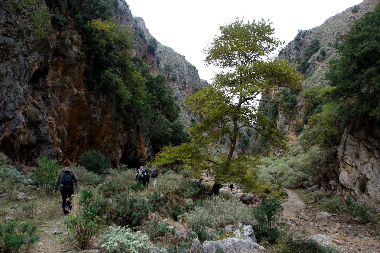 Topolia Gorge - Travel Guide for Island Crete, Greece