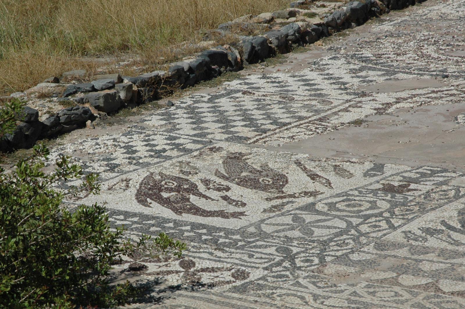 Olus mosaics