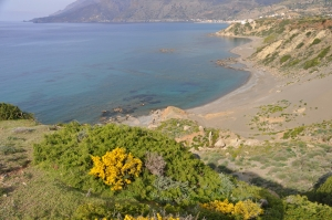 Παραλία Κρασά