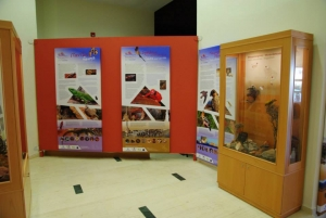 Natural History Museum of Zakros